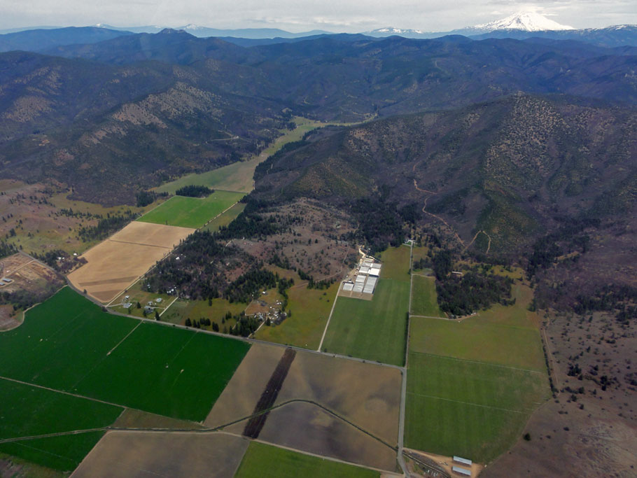Cal Forest Nurseries Aerial View